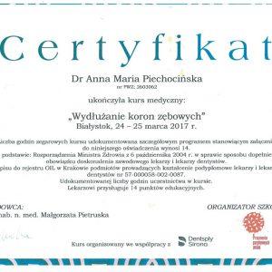 Engel-Certyfikat-nr-10