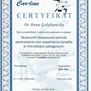 Golebiowska-Certyfikat-nr-2