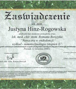 HinzRogowska-Certykikat-nr-5