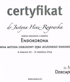 certyfikat2-1024x718